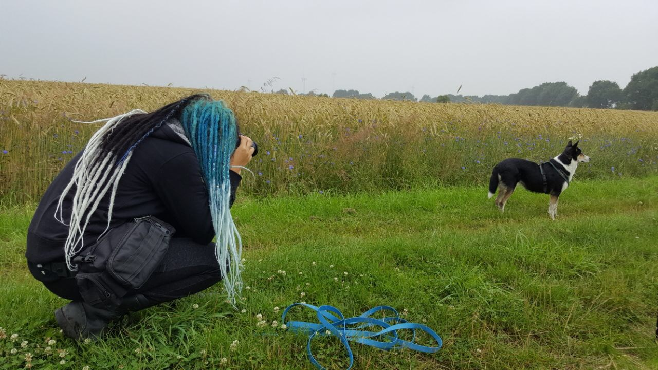 Frau mit Dreads fotografiert Hund auf Feldweg